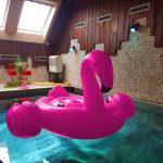 Gifbanner von Contessa Flamingo