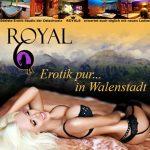 Gifbanner von Erotik Studio Royal6